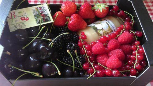 Fruitmanden met heerlijk seizoensfruit